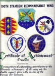 100th AMMS Patches